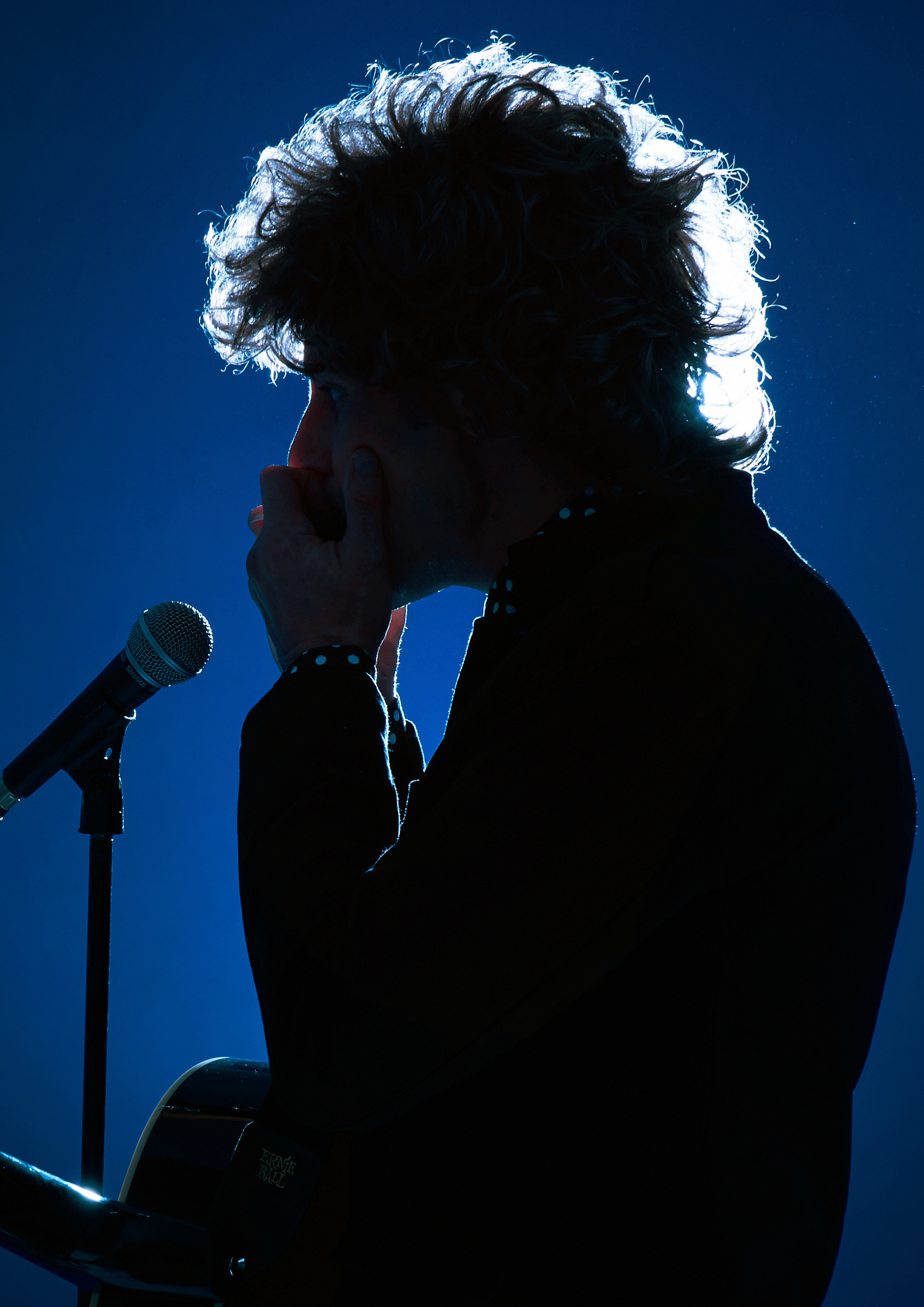 The Bob Dylan Story (Bill Lennon)
